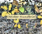 Newsletter_Oktober_Legakids_alphaprof